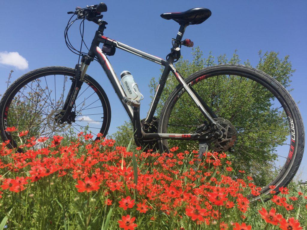 Sedona bisiklet